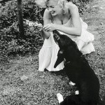 Marilyn plays with her dog Hugo in 1957 (he stayed with Arthur after the divorce)