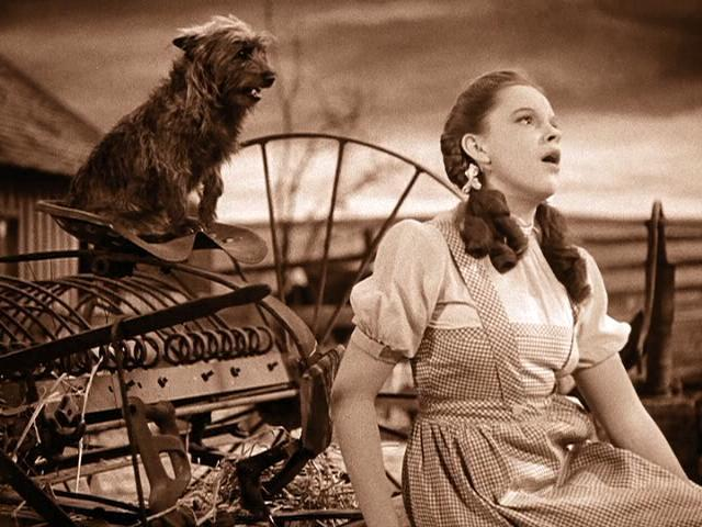 The Wizard of Oz (1939) - Classic Hollywood Central